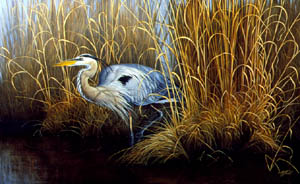 Set in Gold - Great Blue Heron