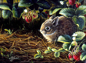 Young Cottontail & Strawberries